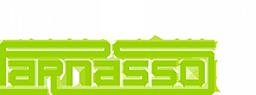 TSGP Logo